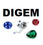 Logo Digem