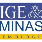 Logo IGEMinas