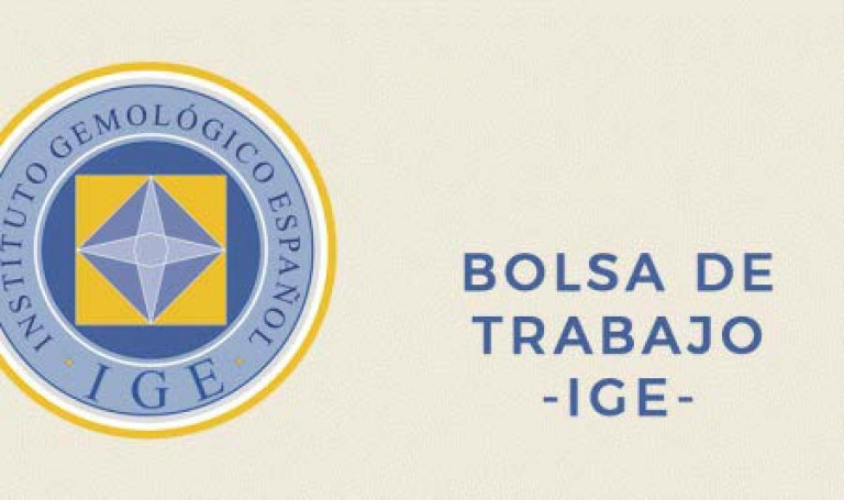 Logo Bolsa de Trabajo bueno