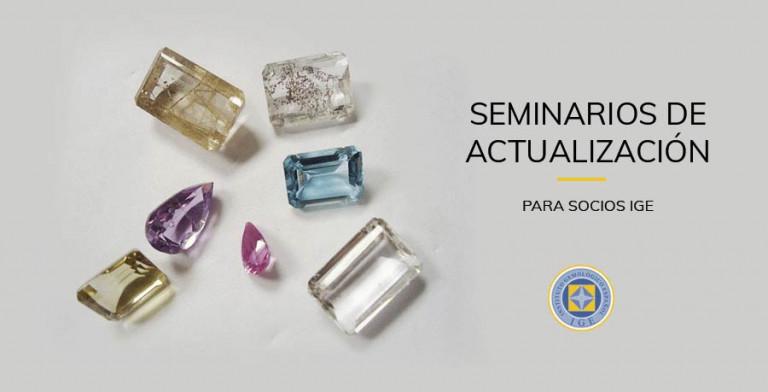ige.org-ige.org-seminarios-actualizacion-ige-seminarios-actualizacion-gnral
