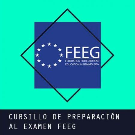 Cursillo de Preparación al examen de la FEEG