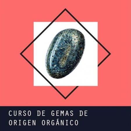 Curso de Gemas de origen orgánico