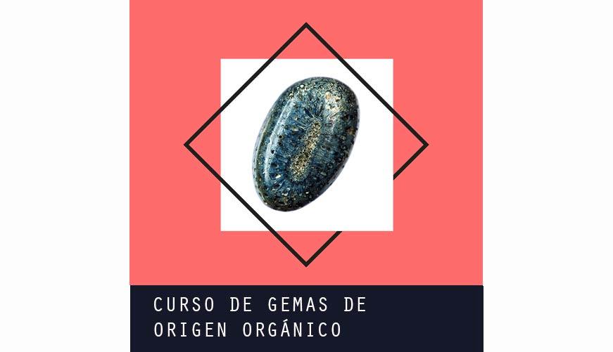 ige.org-gemas-orgnicas-cuadrado