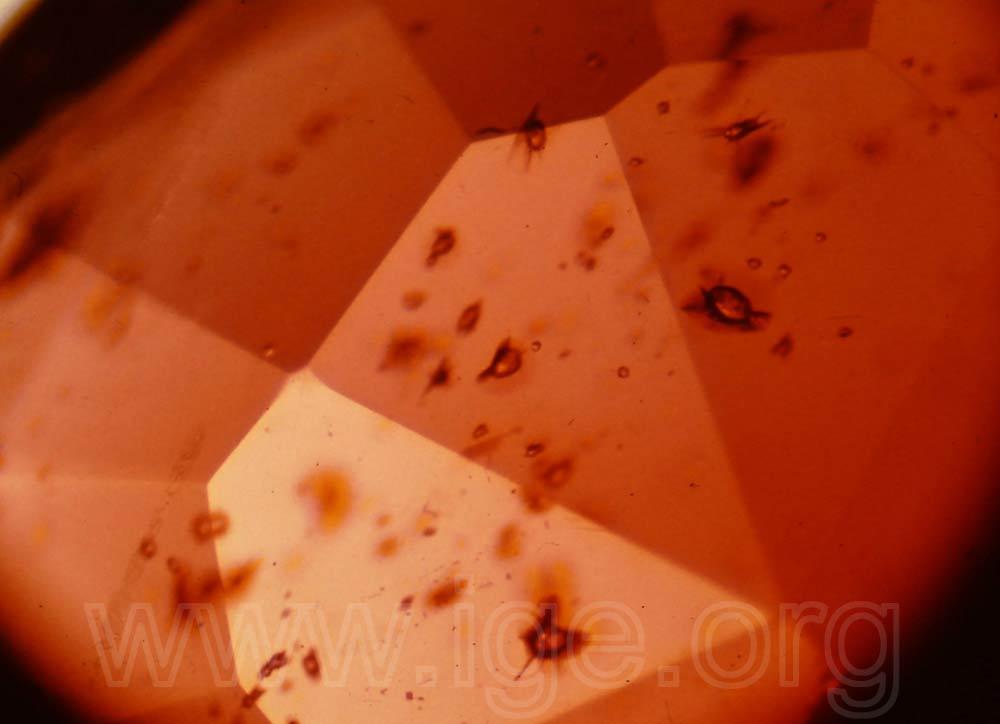 Zircones con halo en granate almandino