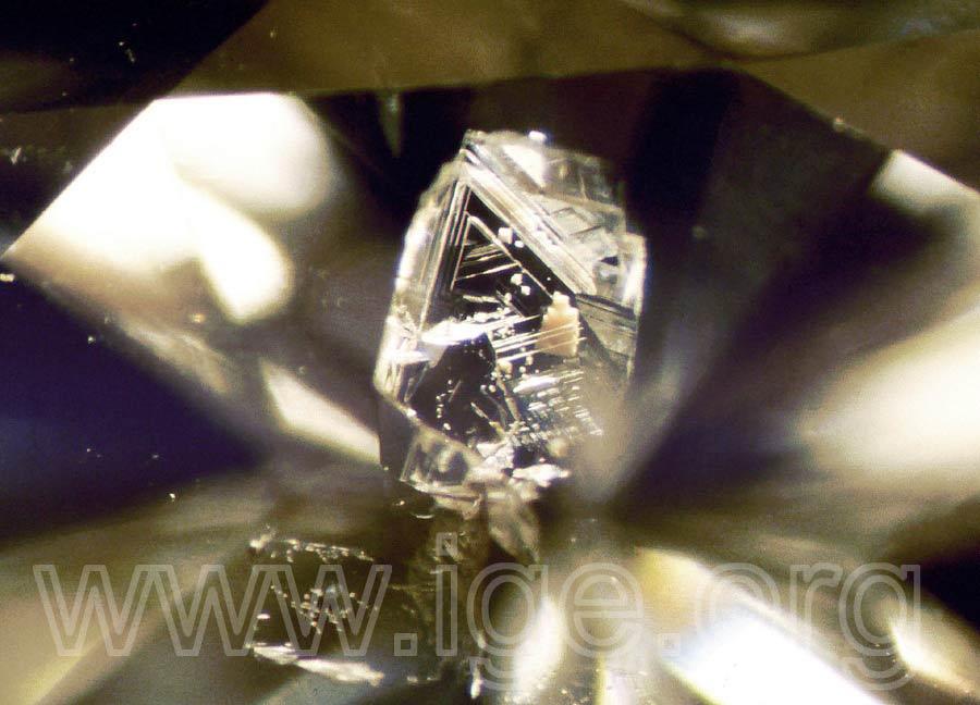diamante_inclusion_diamante