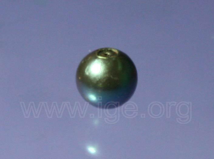 Perla cultivada teñida