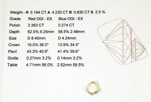 resultado-estudio-scannox