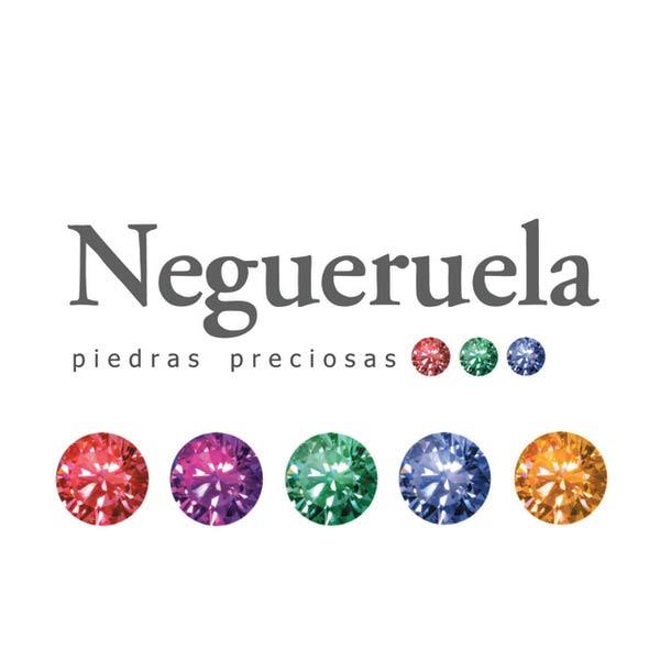 socio-profesional-ige-negueruela